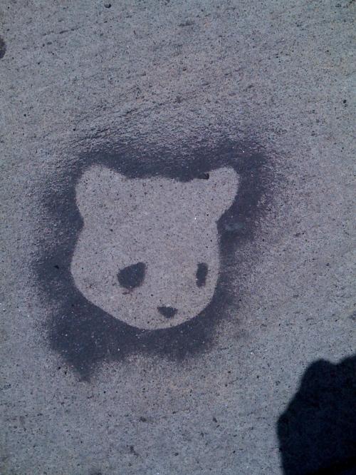 melrose bear