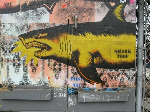 shark toof, bergamot station